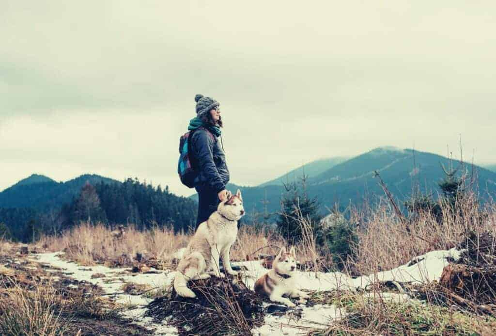 hiking with dogs featimage