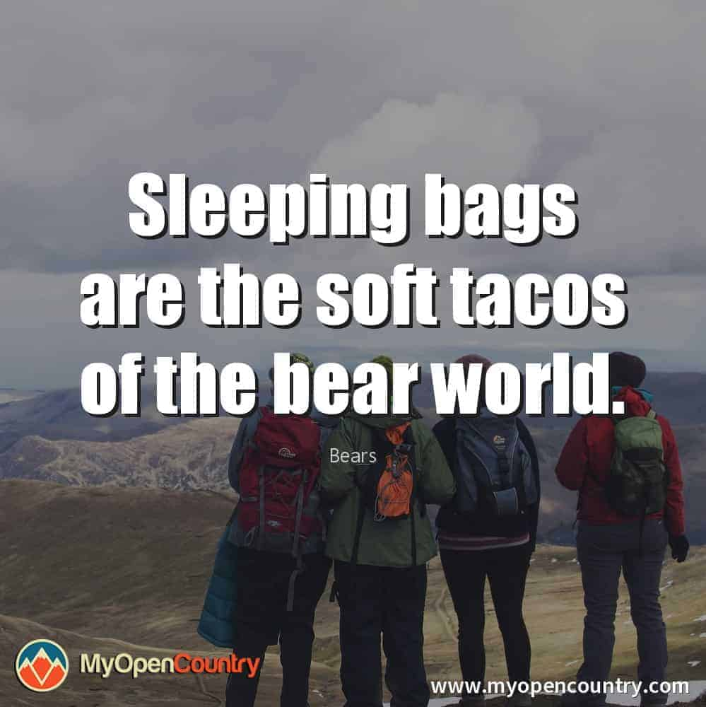 Hiking-Quotes-Bears