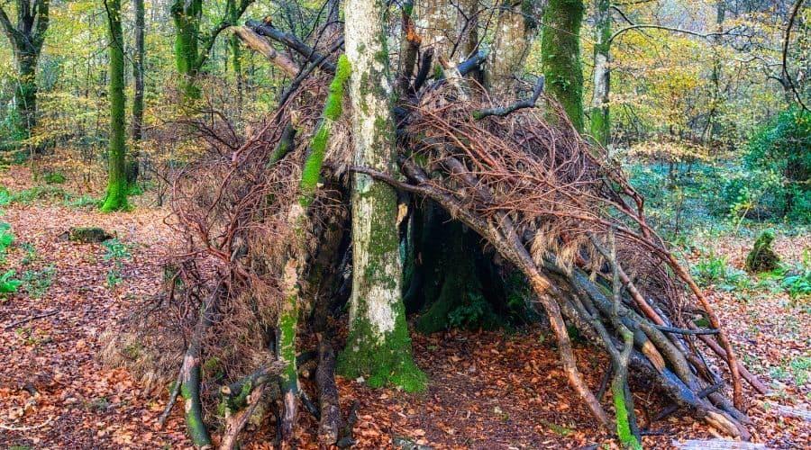 bivouac survival shelter