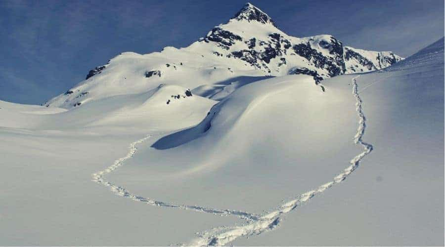 two paths in the snow