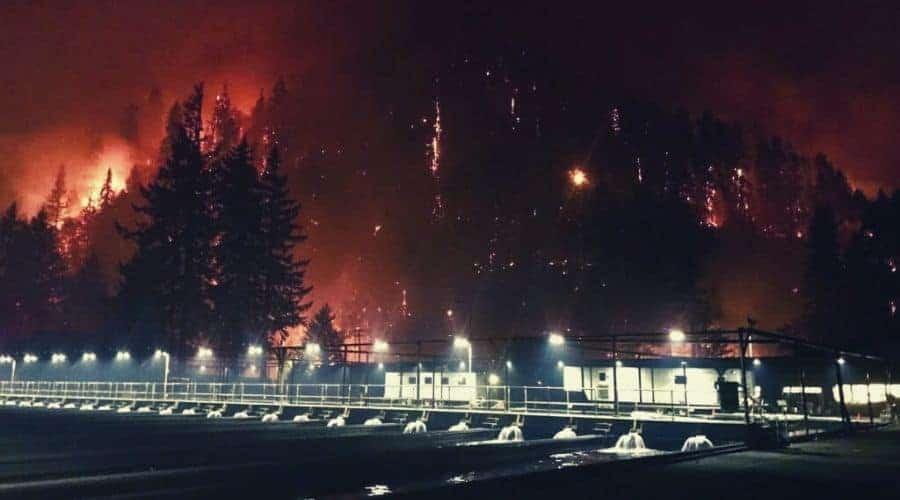 Eagle Creek Forest Fire, 2017 intext