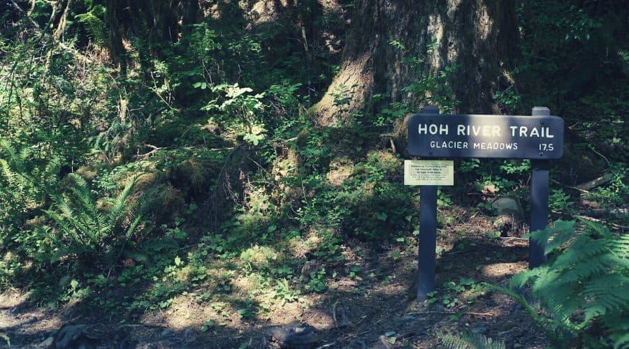 Hoh River Trail 1 intext