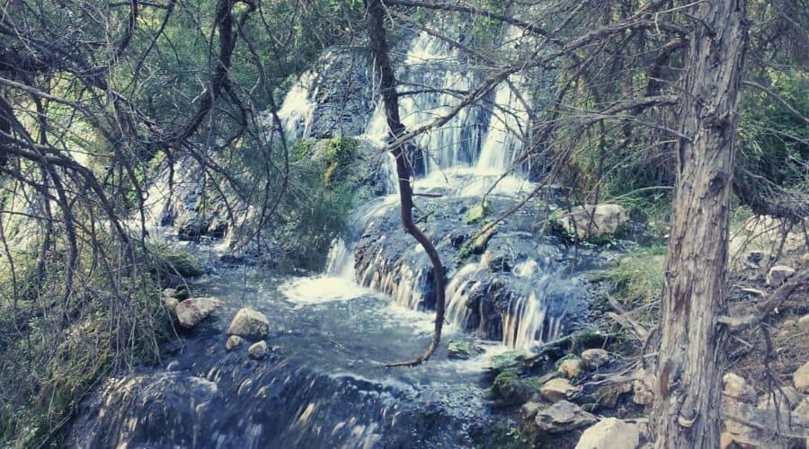 Goldbug Hot Springs 2