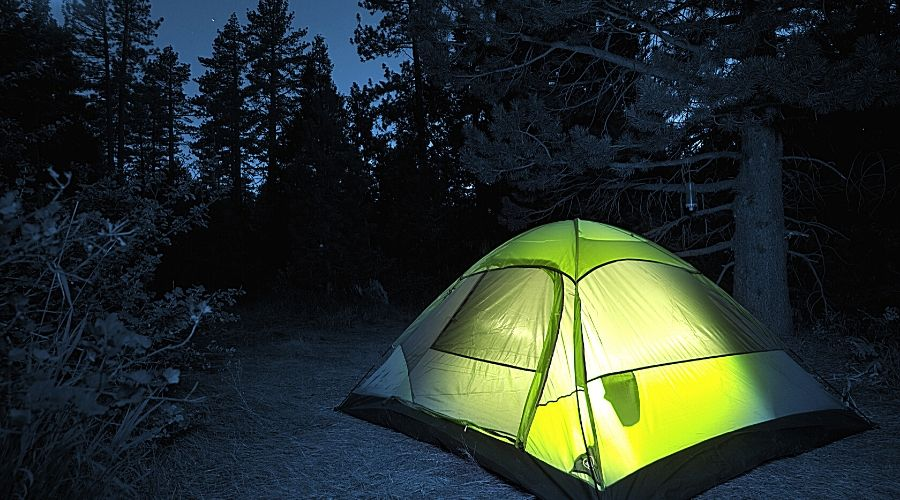 Small Camping Tent in dark forest - In Text
