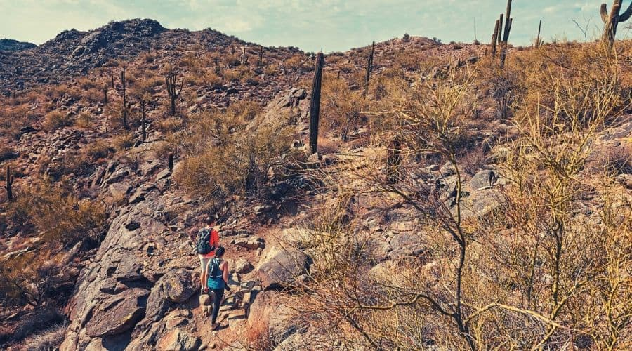 2 hikers on the holbert trail intext