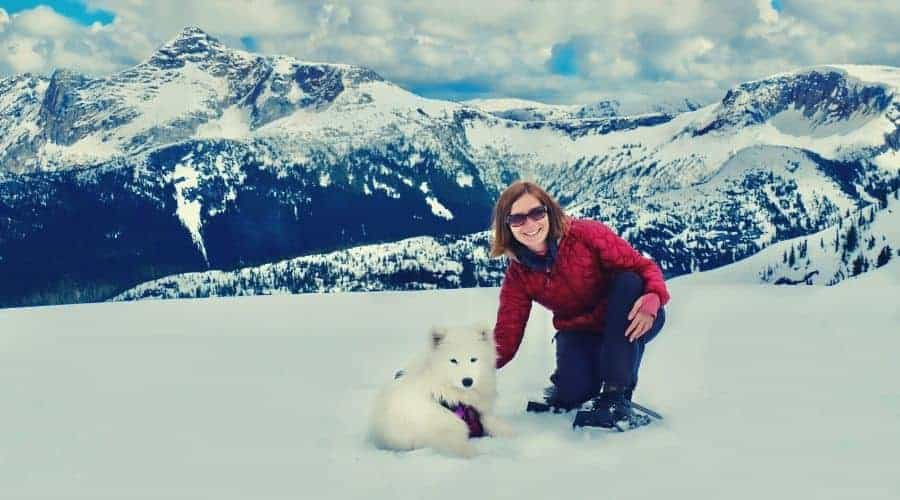 female hiker with samoyed puppy on snowy mountainside intext