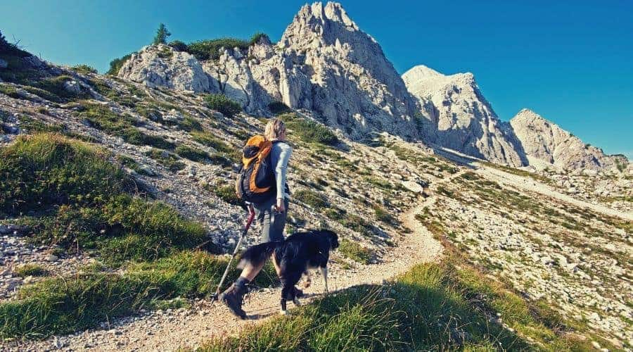 woman hiker walking mountain trail with dog intext