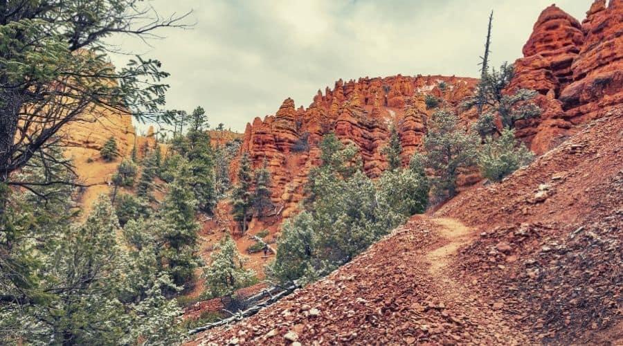 Hiking trail Dixie national forest Utah
