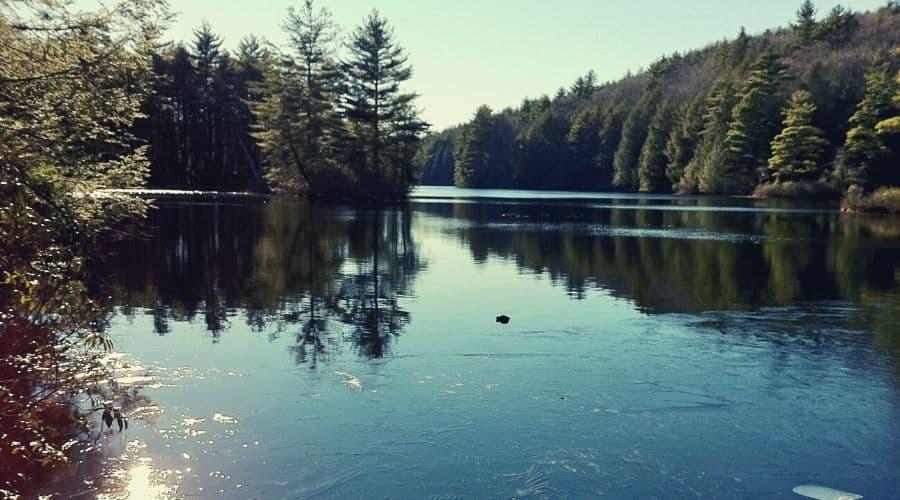 Breakneck Pond Loop Trail, Bigelow Hollow State Park