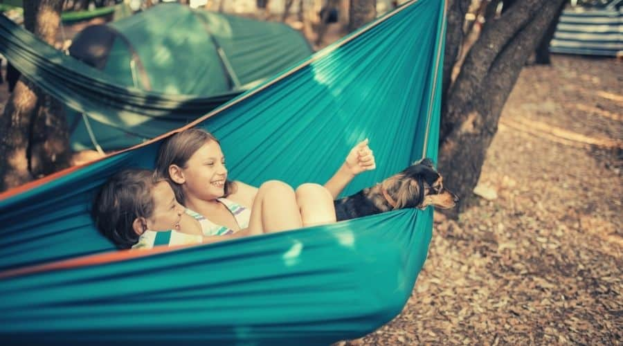 dogs and kids in a hammock