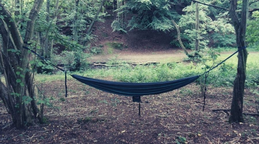 hammock hanging between two trees in forest