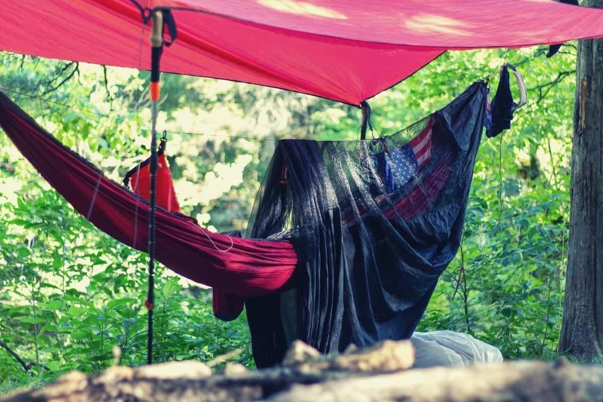 hammock camping 101 - featimg