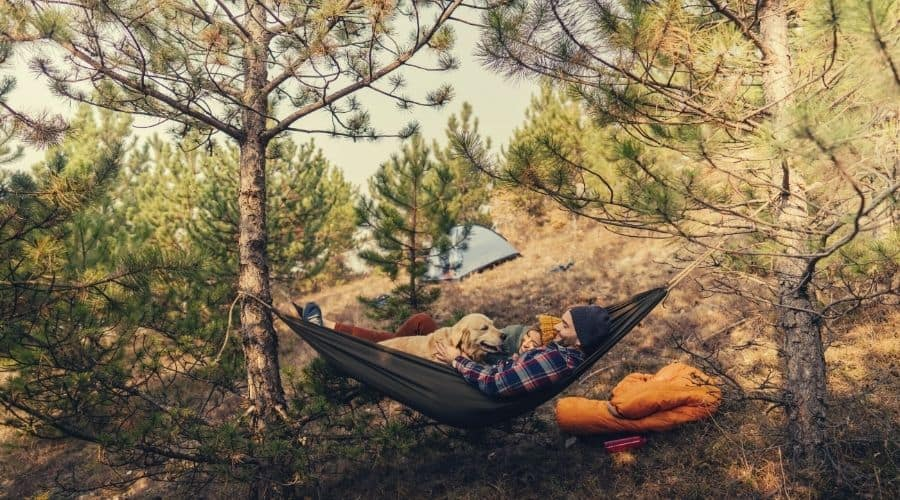 hammock camping with dog lab