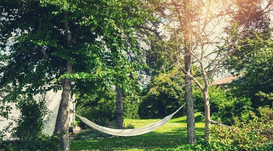 hammock hanging in back garden