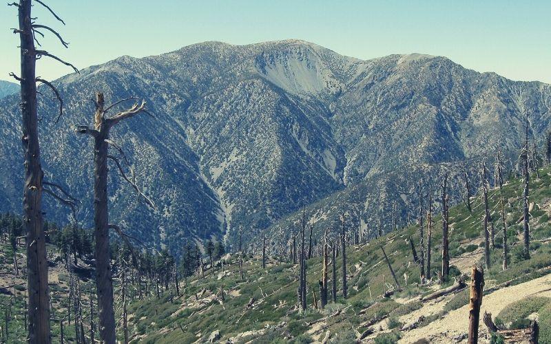 Big Baldy Ridge Trail