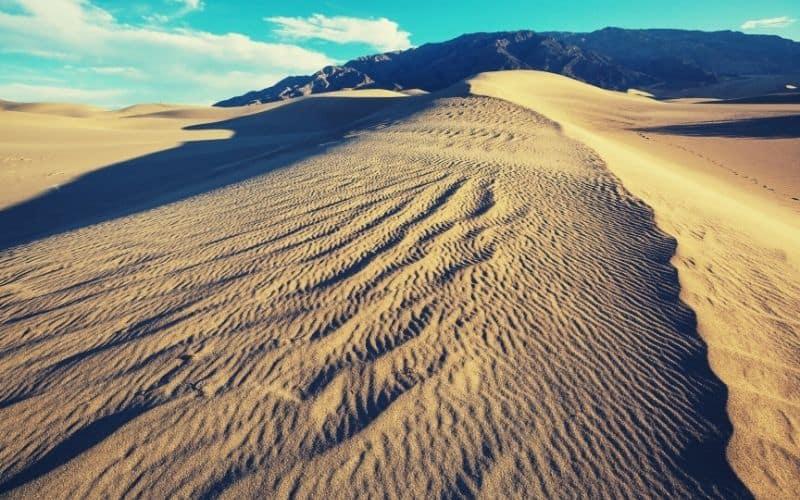 Eastern Dune Ridge