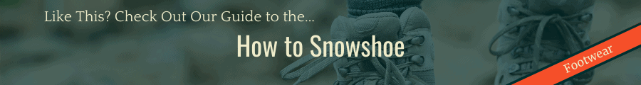 How to Snowshoe Banner