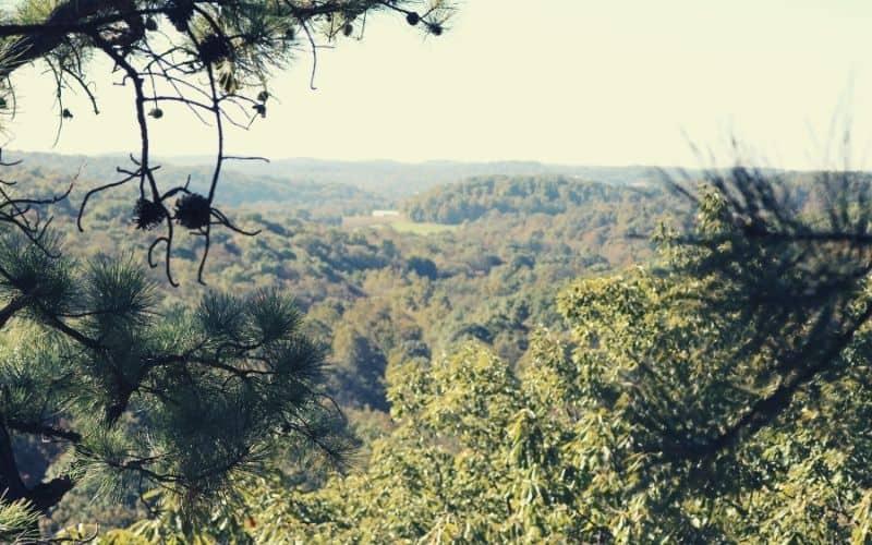 Jacob's Ladder Overlook, Christmas Rocks State Nature Preserve