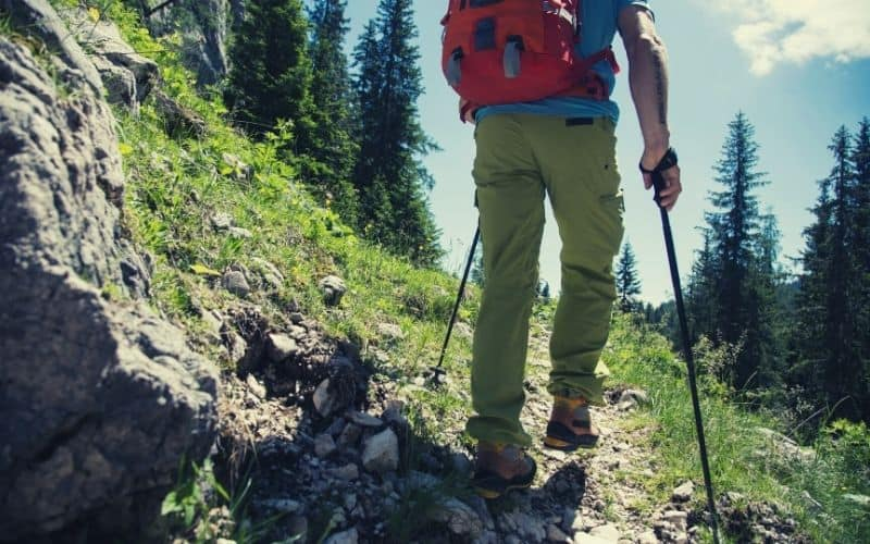 hiker walking trail with trekking poles in spring