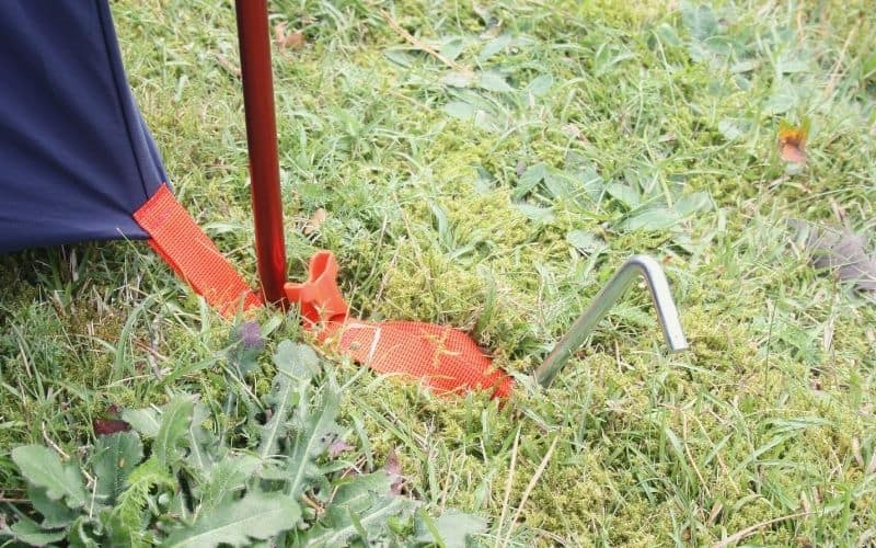 REI Steel tent stake