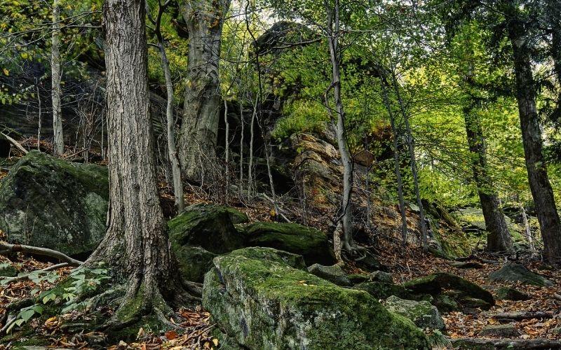Virginia Kendall Ledges Trail